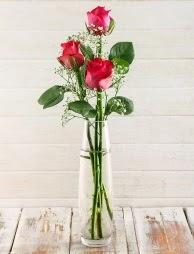 Cam içerisinde 3 kırmızı gül  Sivas çiçek yolla