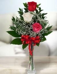 Camda 2 kırmızı 1 beyaz gül  Sivas çiçekçi telefonları