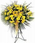 Sivas çiçek mağazası , çiçekçi adresleri  Sari kazablanka Ferforje