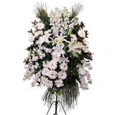 Sivas internetten çiçek siparişi  Ferforje beyaz renkli kazablanka