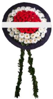 mozele çiçeği  Sivas uluslararası çiçek gönderme