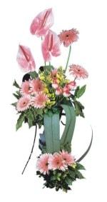 Sivas çiçek servisi , çiçekçi adresleri  Pembe Antoryum Harikalar Rüyasi