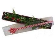 Sivas çiçek satışı  3 adet gül.kutu yaldizlidir.