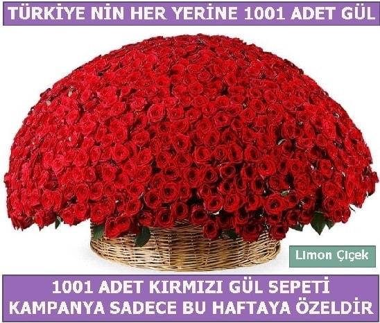 1001 Adet kırmızı gül Bu haftaya özel  Sivas yurtiçi ve yurtdışı çiçek siparişi