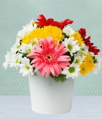 Seramik Vazoda Gelbera ve Papatya  Sivas İnternetten çiçek siparişi