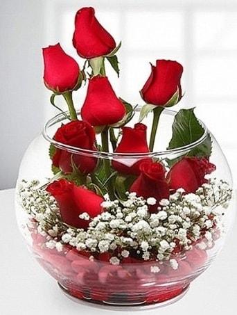 Kırmızı Mutluluk fanusta 9 kırmızı gül  Sivas ucuz çiçek gönder
