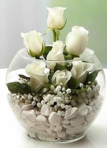 Beyaz Mutluluk 9 beyaz gül fanusta  Sivas ucuz çiçek gönder