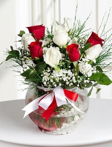 Aşk Küresi  5 beyaz 5 kırmızı gül fanusta  Sivas hediye çiçek yolla