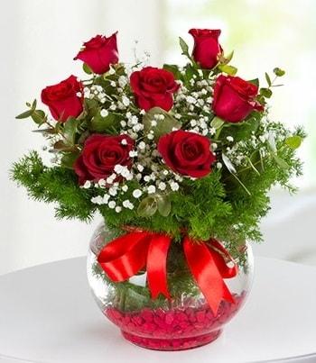fanus Vazoda 7 Gül  Sivas çiçek gönderme