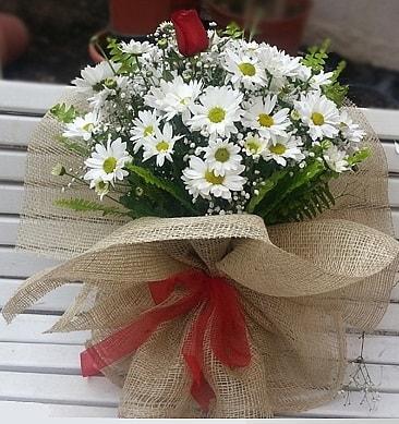 Papatya 1 adet kırmızı gül buketi  Sivas çiçekçi mağazası