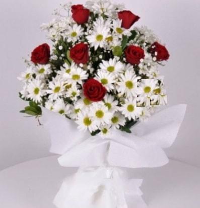 7 adet kırmızı gül ve papatyalar krizantem  Sivas hediye çiçek yolla