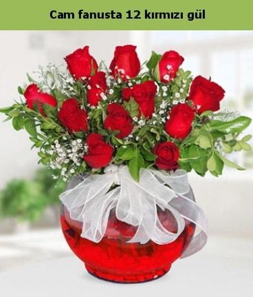 Cam içerisinde 12 adet kırmızı gül  Sivas hediye çiçek yolla