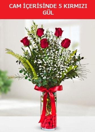 Cam içerisinde 5 adet kırmızı gül  Sivas ucuz çiçek gönder