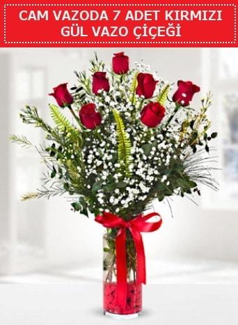 Cam vazoda 7 adet kırmızı gül çiçeği  Sivas online çiçekçi , çiçek siparişi