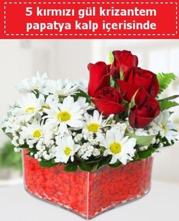mika kalp içerisinde 5 kırmızı gül papatya  Sivas İnternetten çiçek siparişi