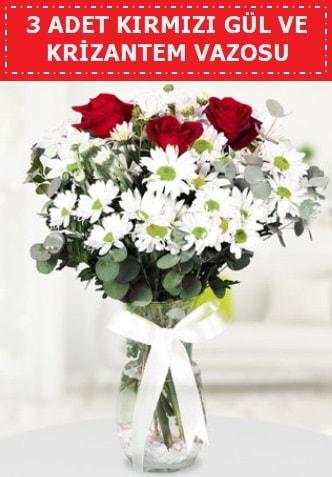 3 kırmızı gül ve camda krizantem çiçekleri  Sivas İnternetten çiçek siparişi