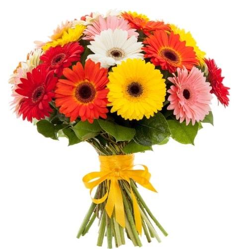 Gerbera demeti buketi  Sivas çiçek yolla