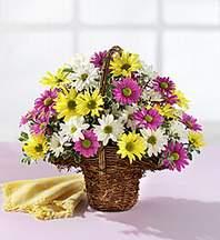 Sivas çiçekçi mağazası  Mevsim çiçekleri sepeti